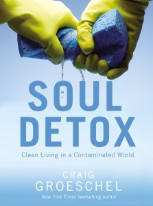 soul detox